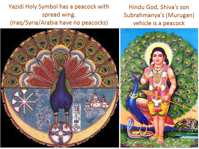 Yazidi - peacock - Hindu Subrahmanya